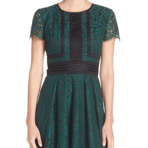 Eliza J Lace Fit & Flare Dress Plus Size 14
